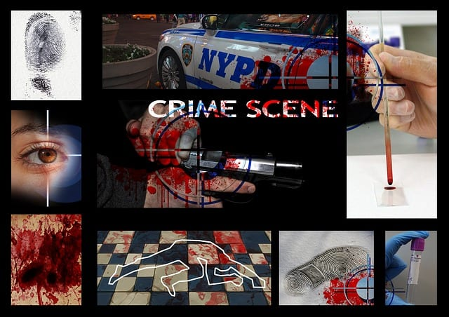 Criminal Case Files - A screenshot of a social media app for a photo - Crime