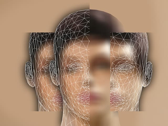 Overview of Clinical Hypnotherapy - A close up of a veil - Extraversion and introversion